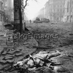 A Soviet major lies dead on Ulloei ut during the Hungarian Revolution, 1956 © akg-images / Erich Lessing