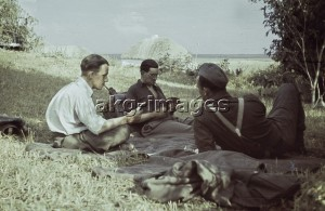 Eastern Front, 1941. Wehrmacht soldiers playing cards during a break in battle. Photo, akg-images
